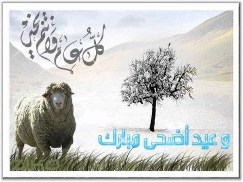 عيد مبارك سعيد كل عام وأنتم بخير 2707529640_1